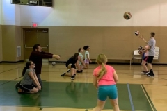 Spring Volleyball Clinic