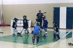 dek Hockey